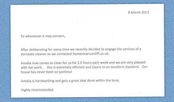 Customer Testimonial for Domestic Cleaner in Cardiff
